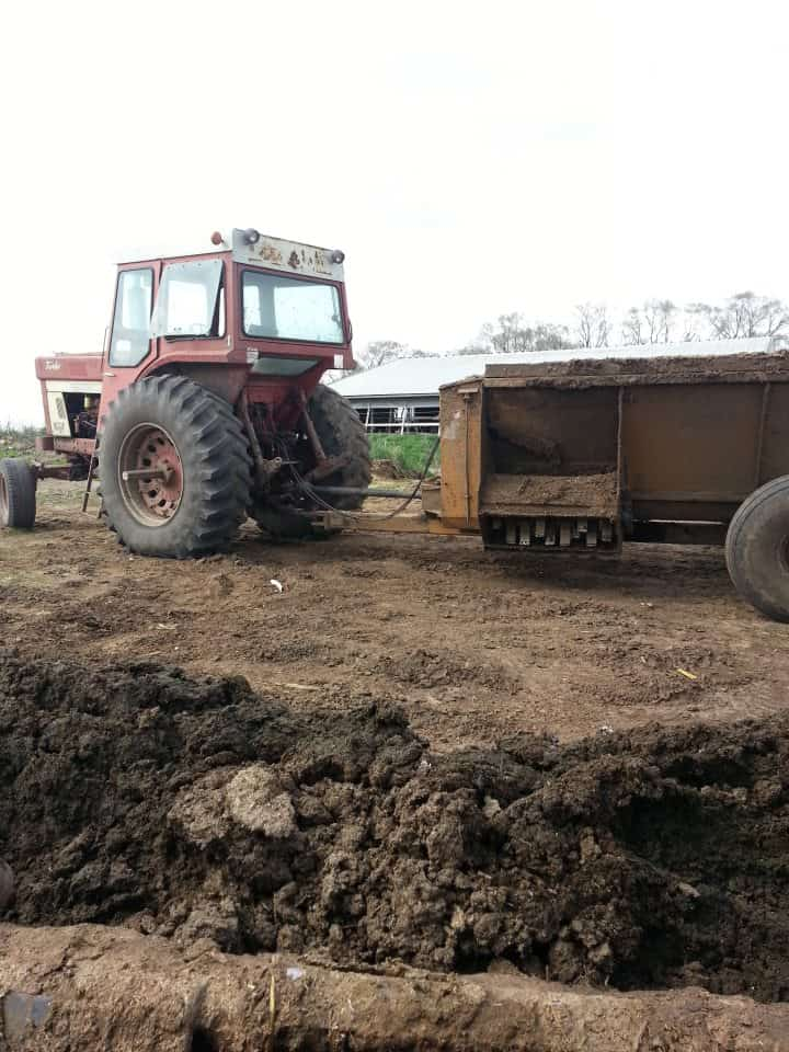 IH 1066 tractor and spreader.