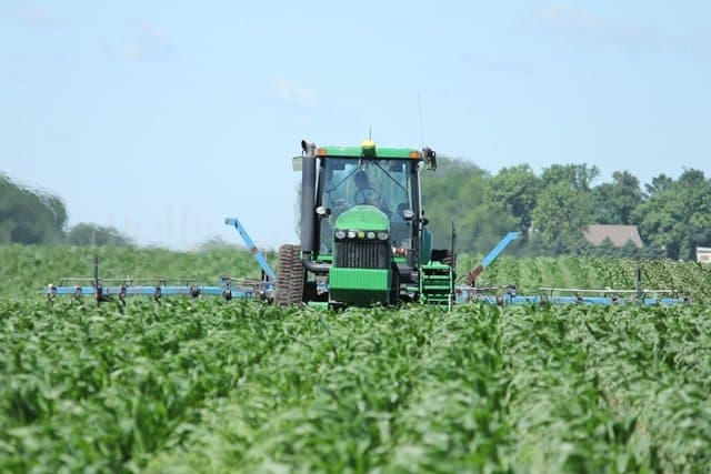 Organic weed control