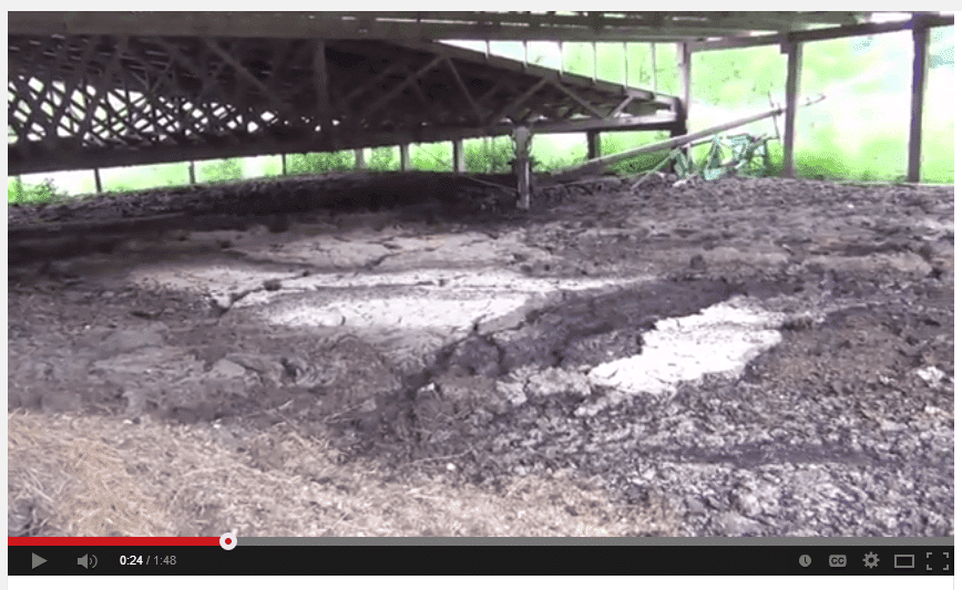 About that manure pit?