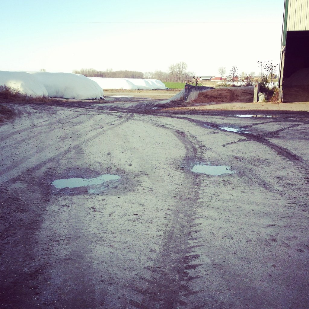 No that isn't snow or frost, it's corn dust!
