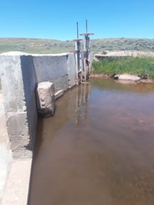 beef sustainability water irrigation